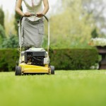 Close-up low section of woman cutting grass with lawn mower